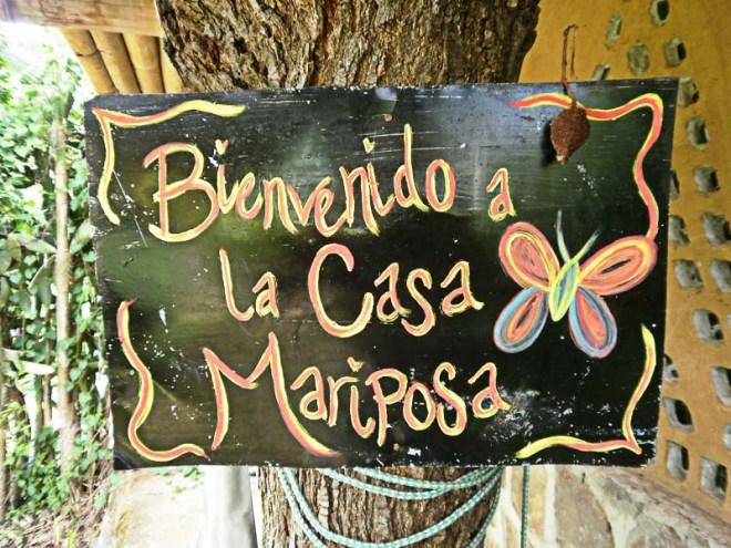 imap-casa-mariposa-2